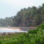 Экзотическая Шри-Ланка под шум Индийского океана. Ч.3.