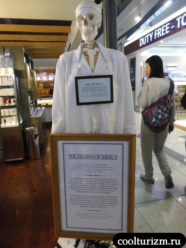 Дубай.скелет в аэропорту