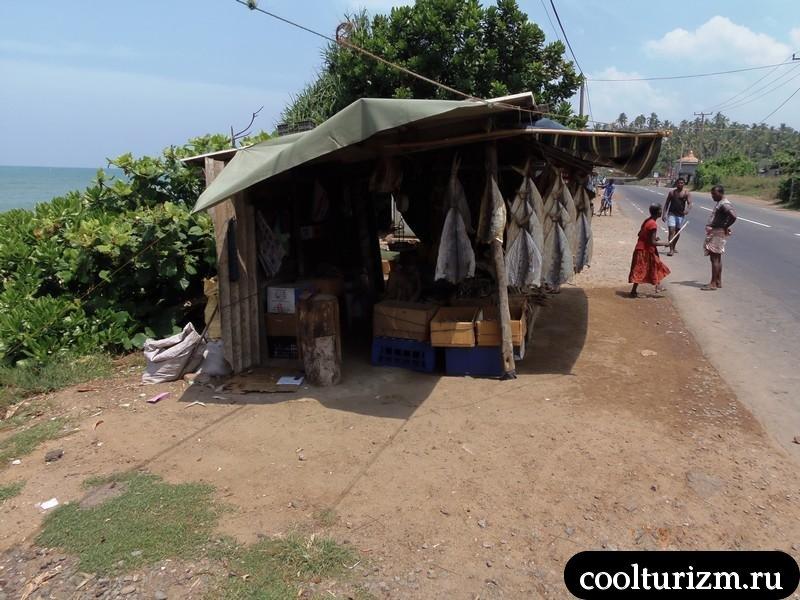 Шри Ланка.рыбный рынок вдоль дороги.