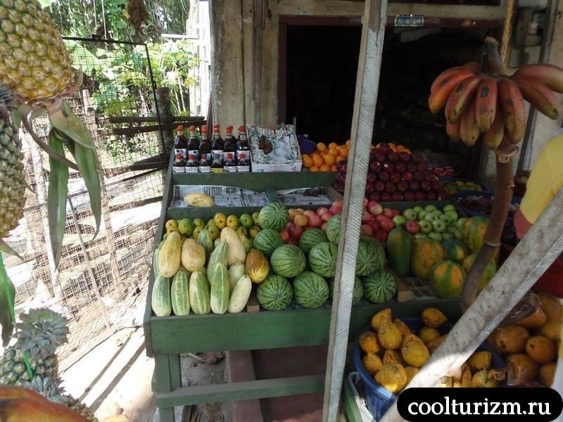 фруктовая лавка.Шри Ланка.экзотика