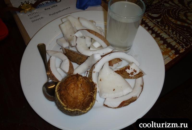 кокос. Шри Ланка