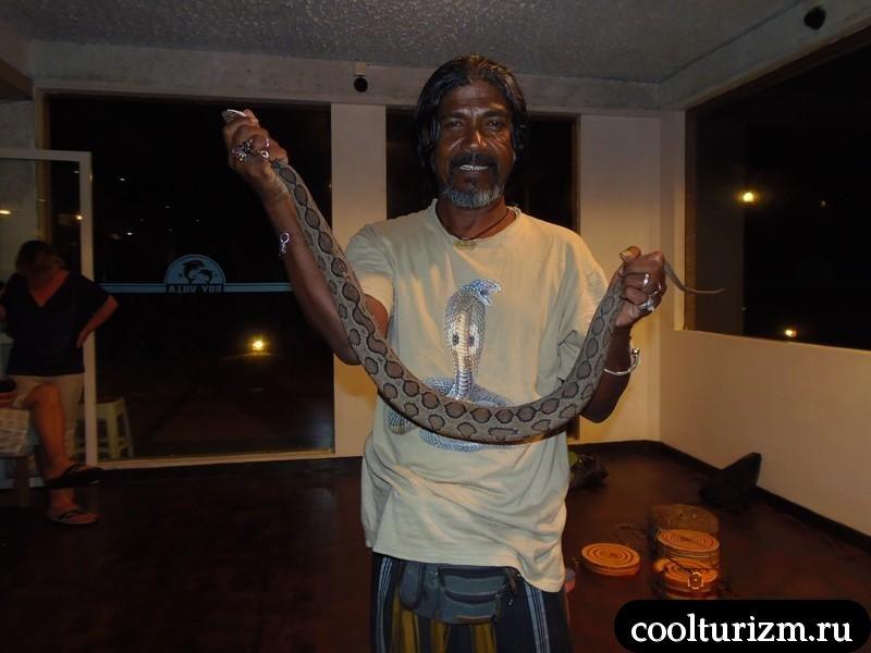 факир был пьян.Шри Ланка