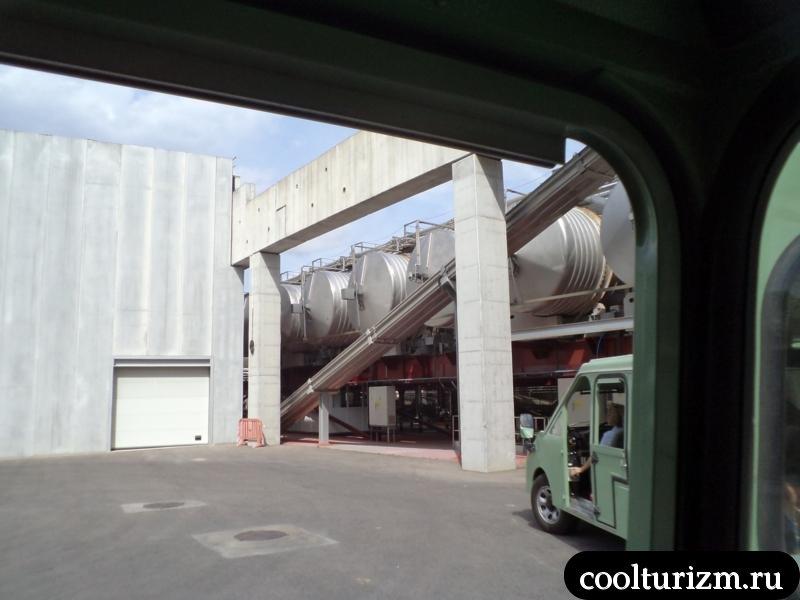 осматриваем виноградники винной фабрики торрес