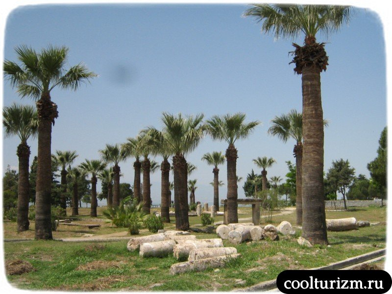 пальмы в Иераполисе