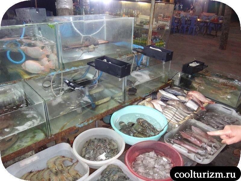 Муй Не выставка рыбы