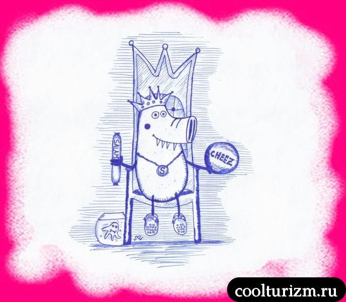 Кинг оф баунти