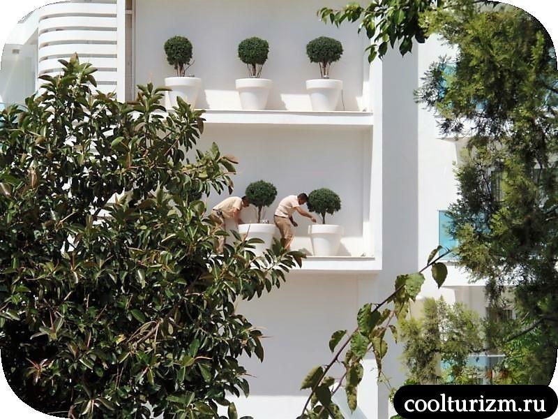 интерьеры отеля Blue Bay Platinum 5* жара июль