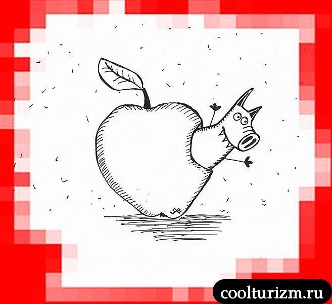 Яблочный червь Свинни