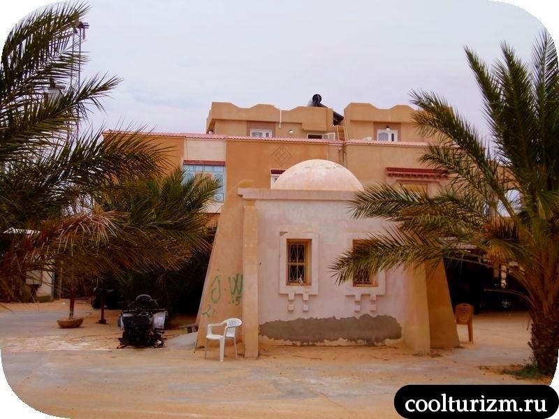 Как покататься на верблюде в Тунисе.Экскурсия в Сахару на два дня