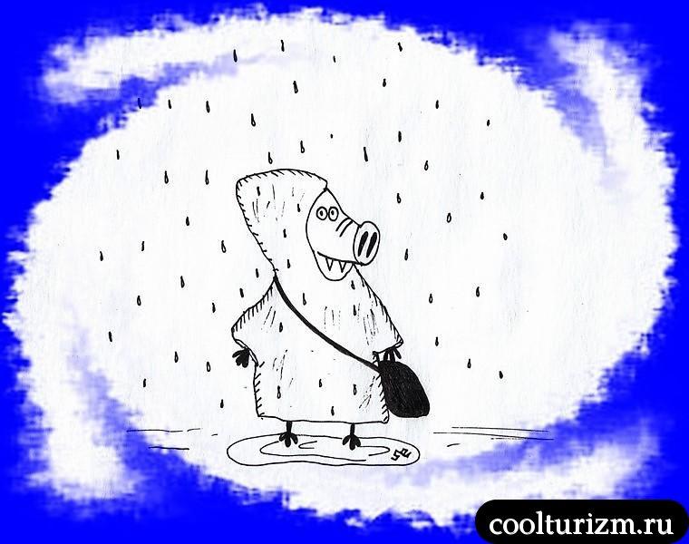 нам не страшен серый...дождь