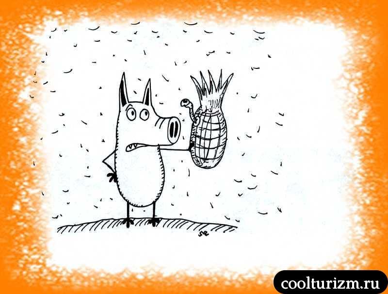 ананасовая рапсодия