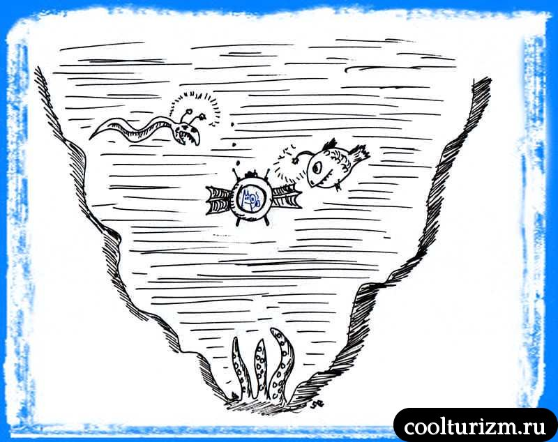 Свинни на дне Марианской впадины