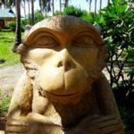 Остров обезьян Нячанг