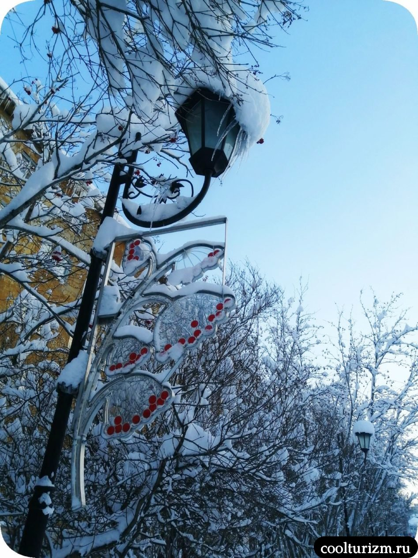 Рябиновая аллея в Мурманске зимой