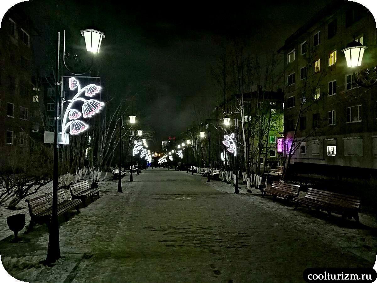 Рябиновая аллея Мурманск зимой в темноте
