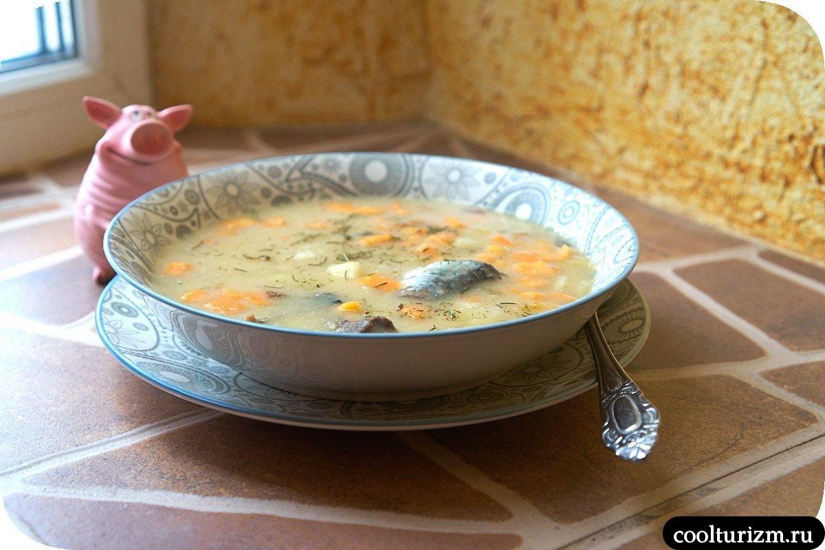 суп из консервы сардины width=