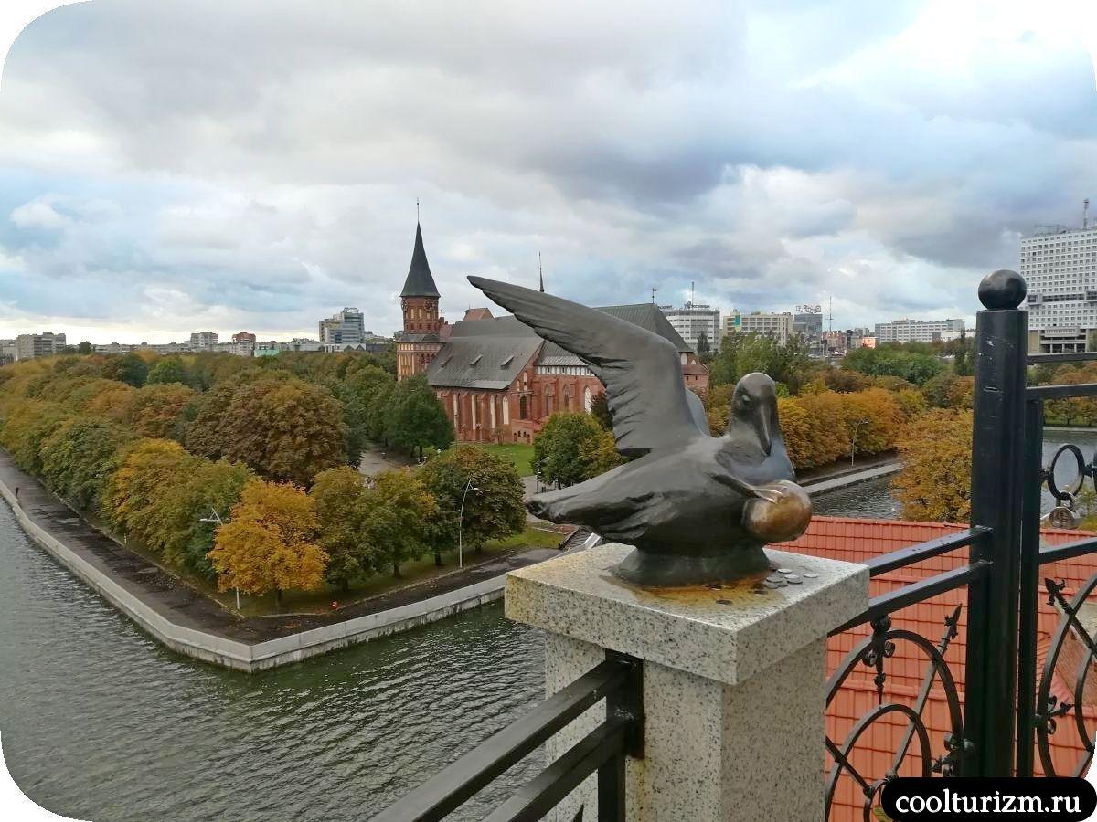 Башня Маяк Калининград виды