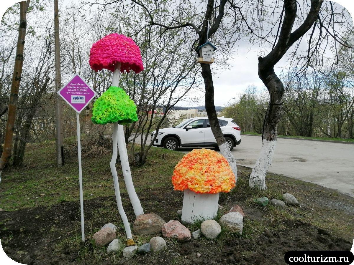 грибы центр Мурманск