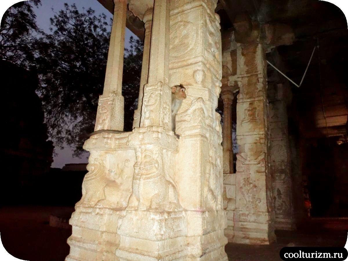 мартышки храм Рамы Рагунатха