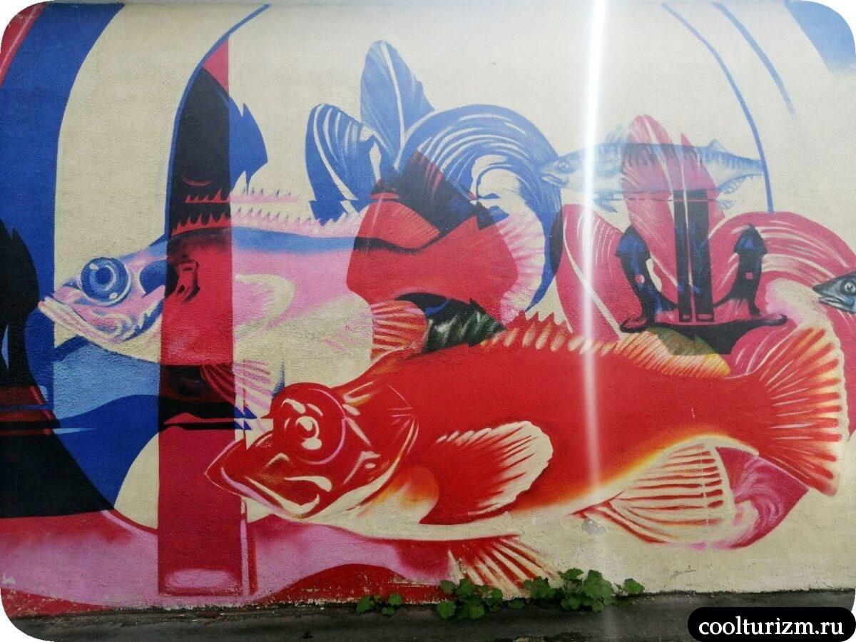 интересные достопримечательности Мурманска.граффити.окунь.центр