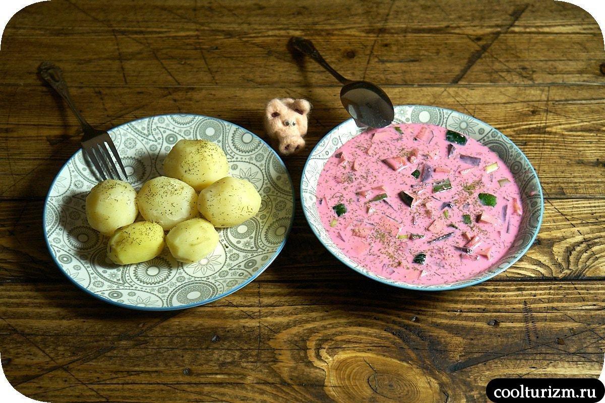 литовский холодный борщ на кефире рецепт с фото