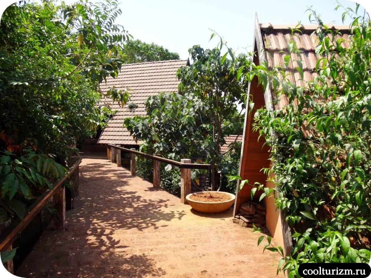 дом в джунглях Свапнаганга Западные Гаты