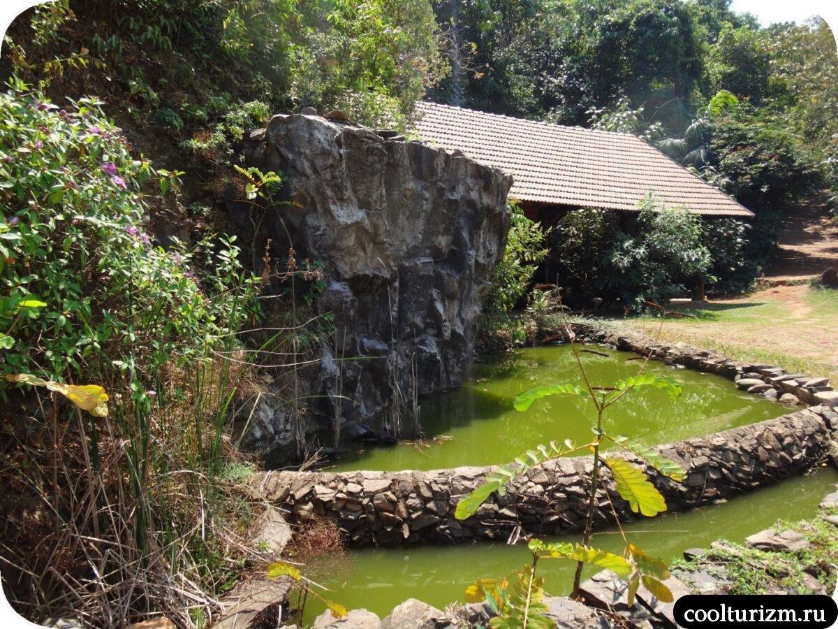 бассейн Инфинити Свапнаганга Западные Гаты