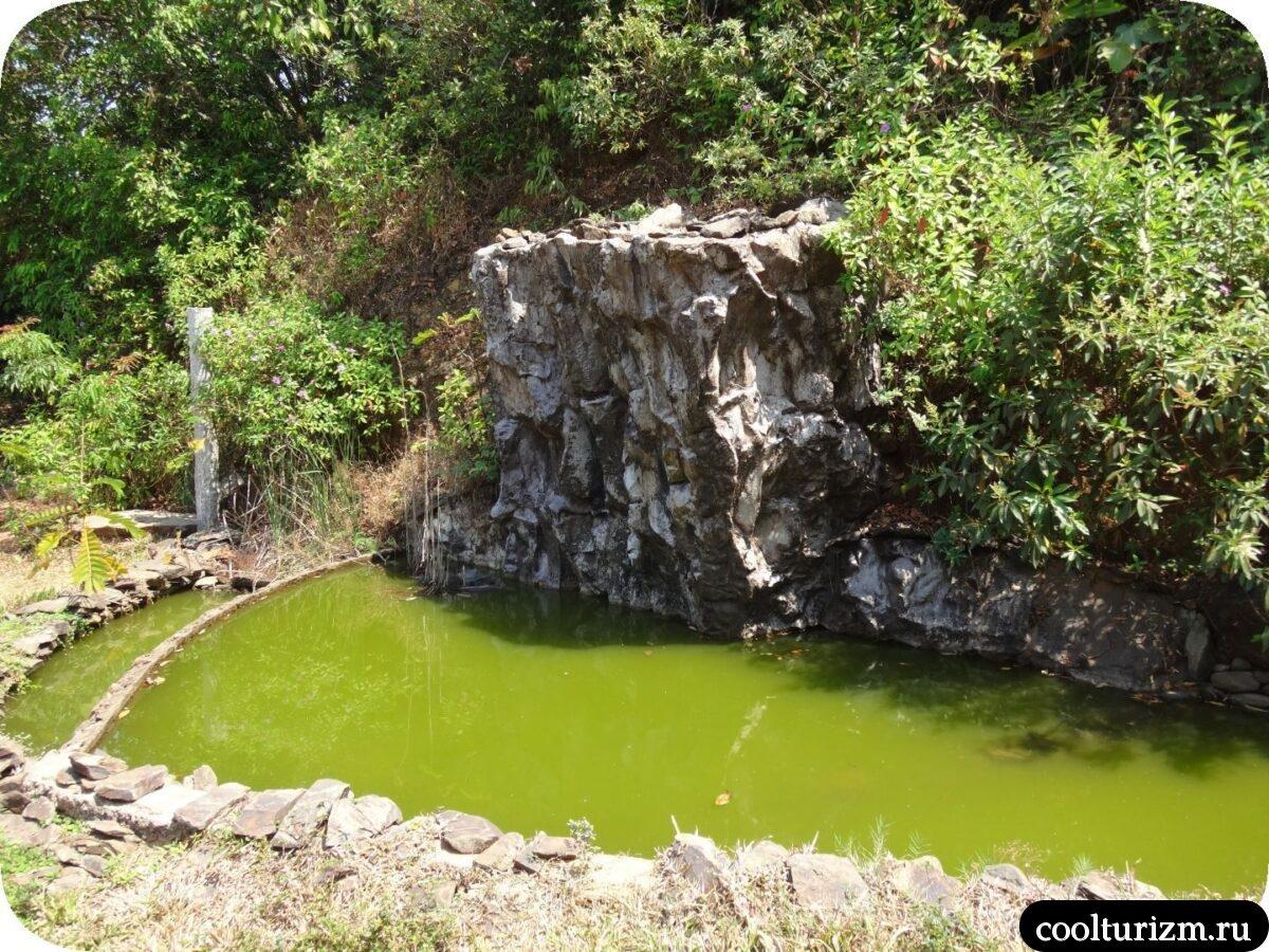 душевая стойка бассейн Инфинити Свапнаганга Западные Гаты