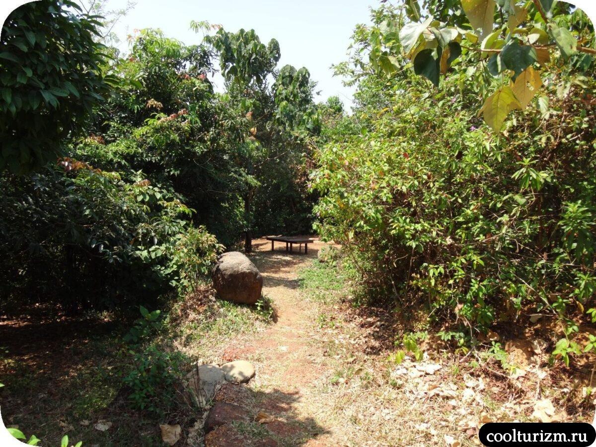 лежаки бассейн Инфинити Свапнаганга Западные Гаты