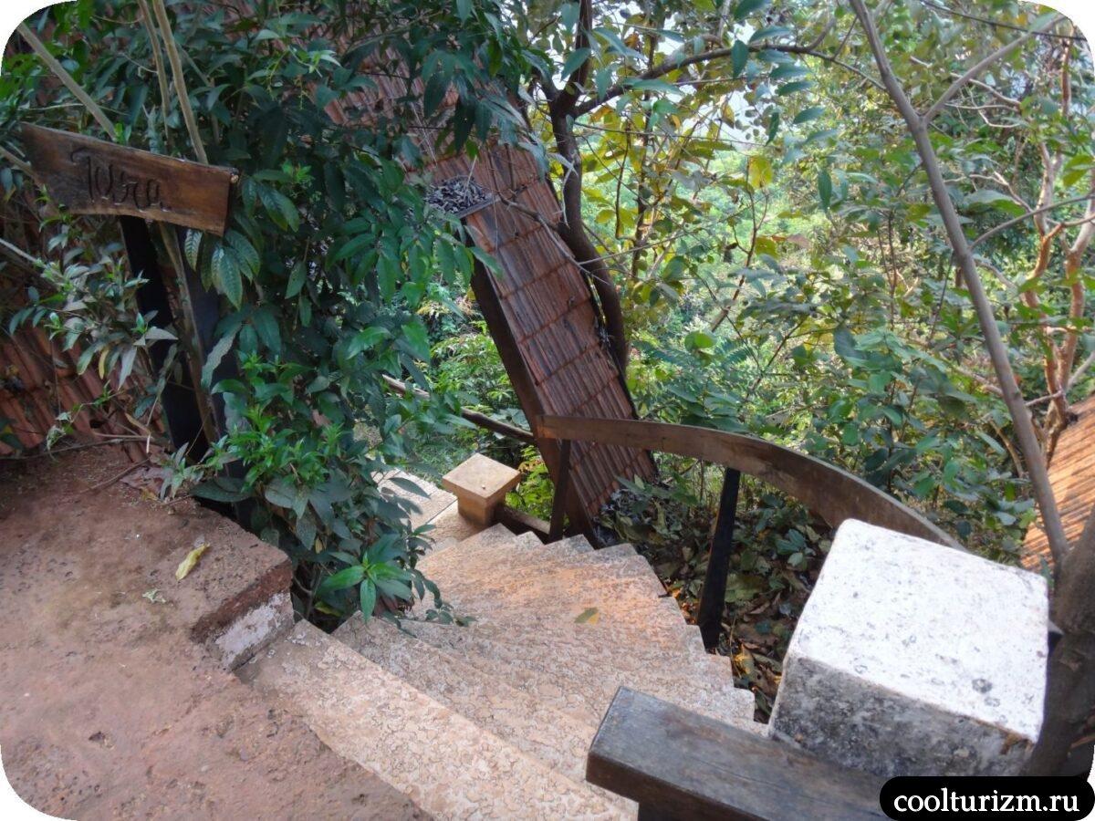 дом в джунглях Свапнаганга Западные Гаты обзор