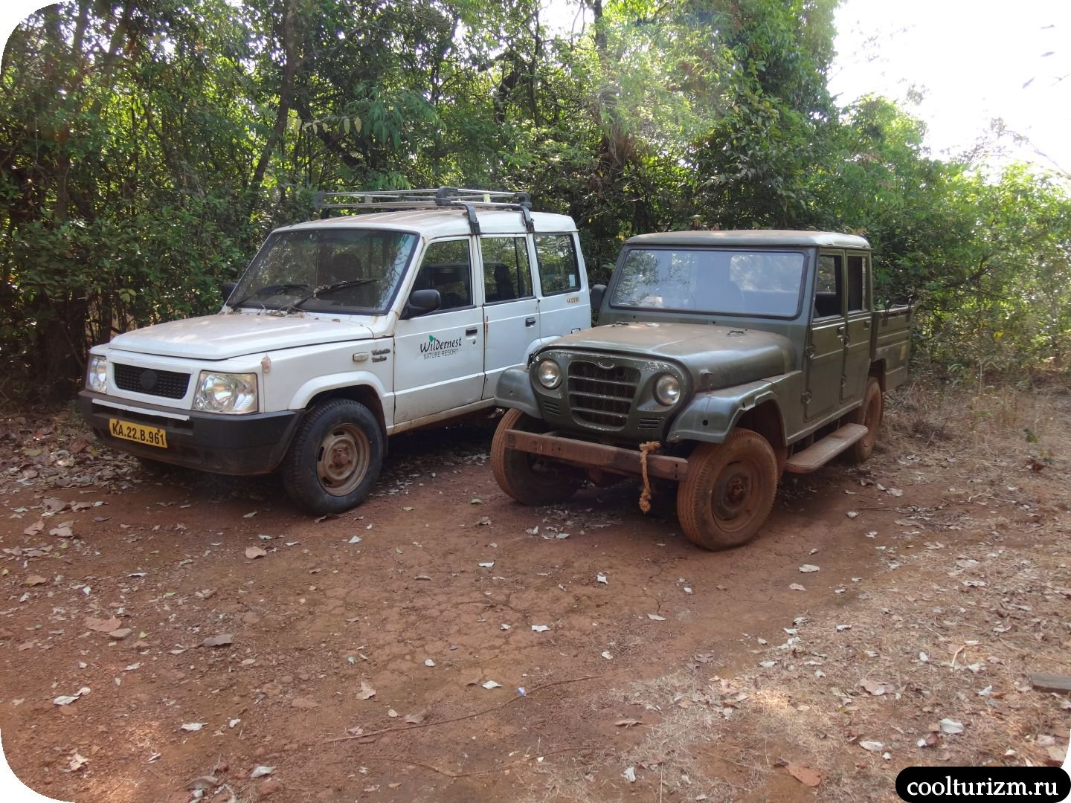 старые автомобили Nature Resort
