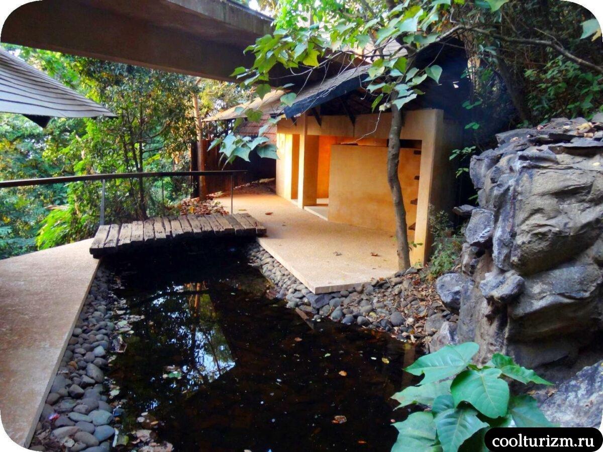 развлекательная программа еда в Swapnagandha Nature Resort