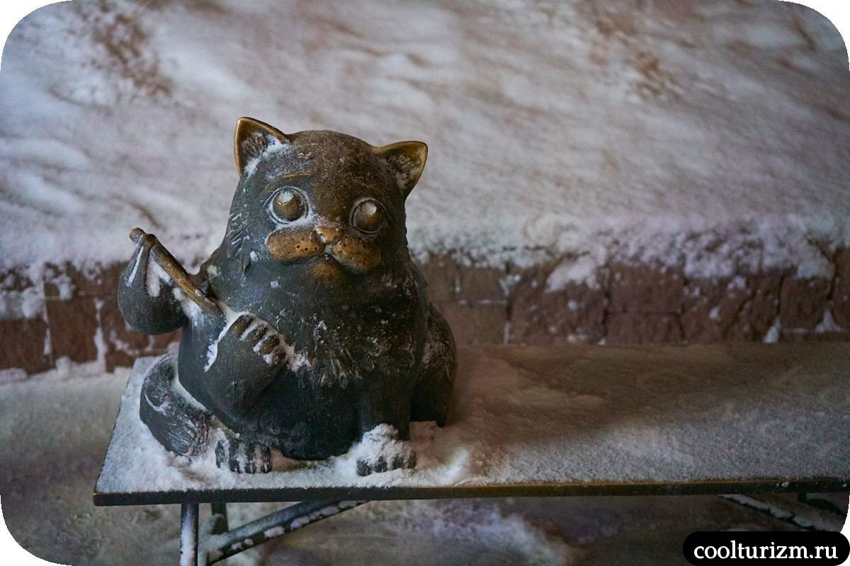 Кот Семен Мурманск скамейка