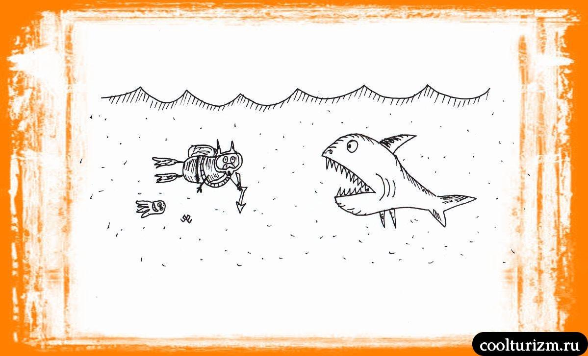 Свинни сражается со злыми акулами