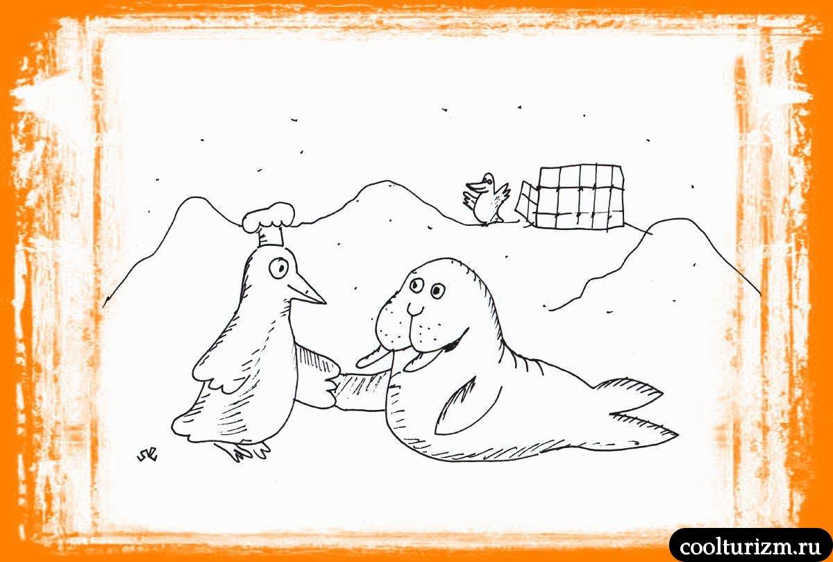 Арктическое перемирие