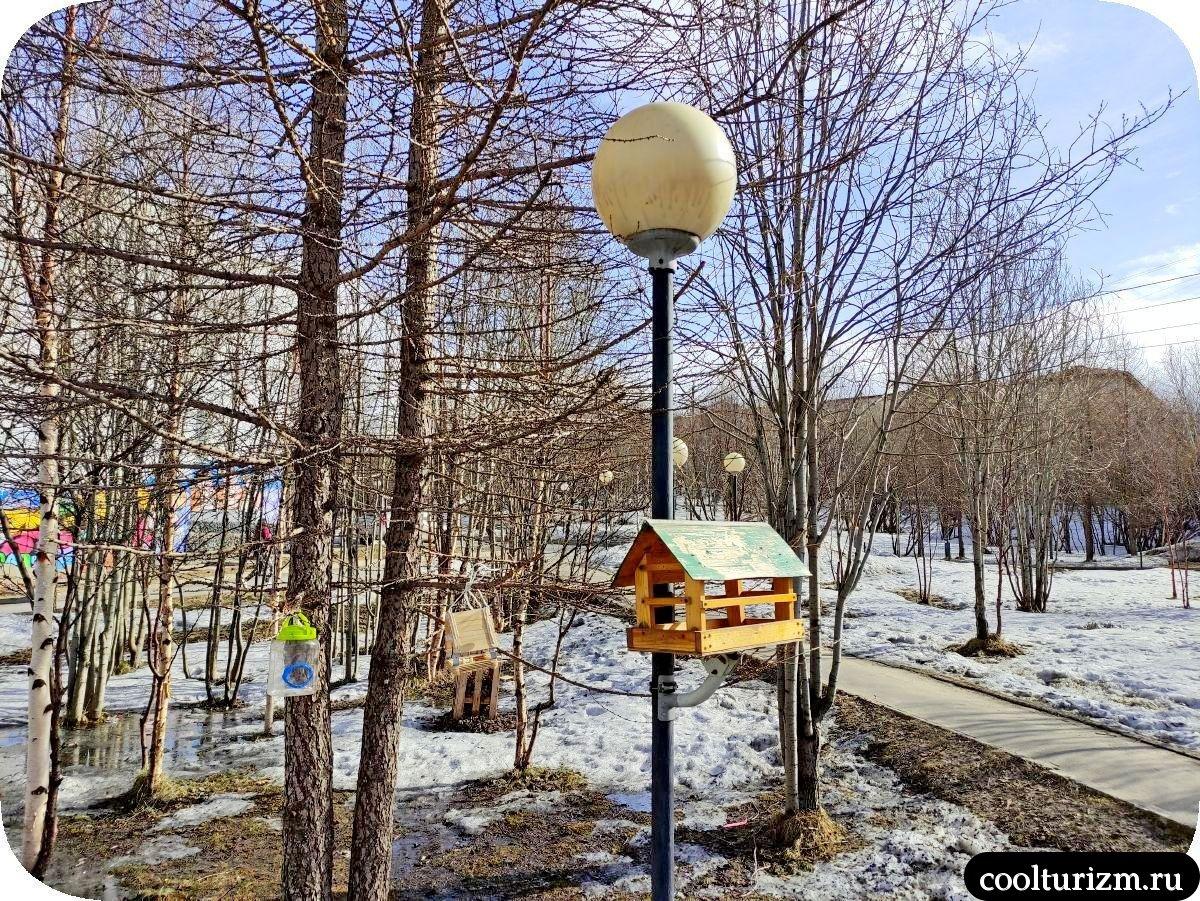 юношеская библиотека Мурманск