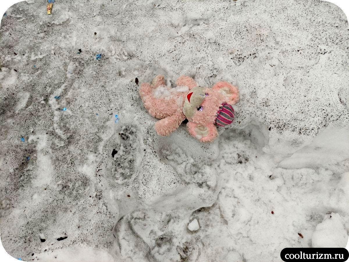 Плюшевый ад мурманских дворов игрушки на снегу