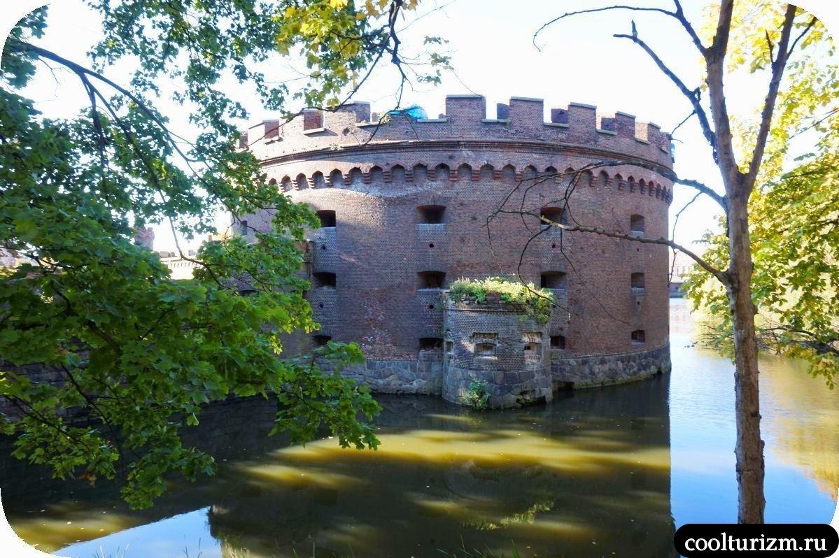 башня Врангеля Калининград где находится